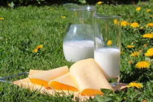 Calcium Mineral Milk and Cheese